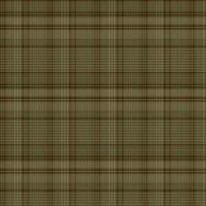 Porch Plaid Folk Green Yarn Dye fabric