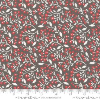 Northern Lights Fabric & FQ