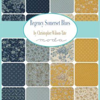 Regency Somerset Blues Fabric - Coming Soon