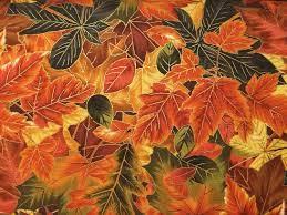 Autumn Fat 1/4s